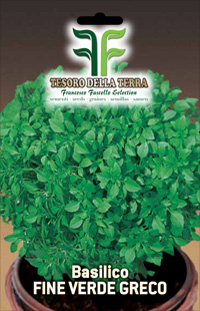 Basil Thin Green Greek