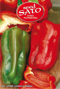 Quadrus Red Pepper Hybrid (sweet)