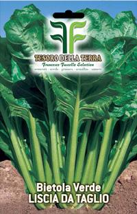 Acelga verde lisa de tala